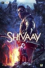 shivaay-951707485-large